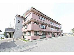 新潟県新潟市西区上新栄町1丁目の賃貸マンションの外観