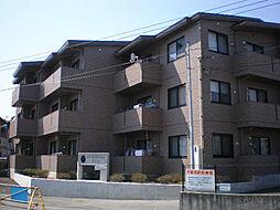 レアールマンションラピス[1階]の外観