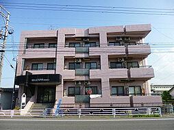 新潟県新潟市中央区上所3丁目の賃貸マンションの外観