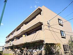 ピアネーズ神ノ倉 A[1階]の外観
