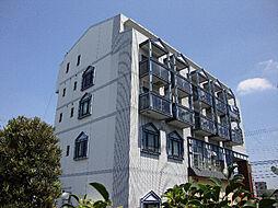 マツヤマビル[4階]の外観