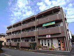 岐阜県岐阜市上芥見の賃貸マンションの外観
