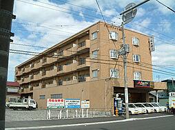 北海道函館市若松町の賃貸マンションの外観