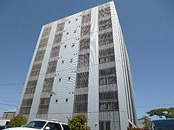 PinoII[7階]の外観
