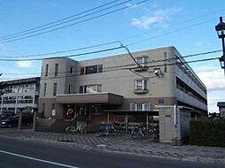 北海道旭川市忠和四条4丁目の賃貸マンションの外観