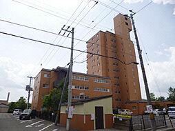 アーバンハイツNAKAI[11階]の外観