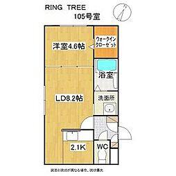 RING TREE(リングツリー) 1階1LDKの間取り