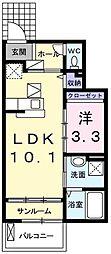 ステッラ丸山 1階1LDKの間取り