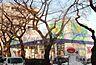 周辺,2LDK,面積55.71m2,賃料9.2万円,JR南武線 西国立駅 徒歩14分,,東京都国立市青柳3丁目18-5