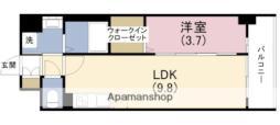 Osaka Metro千日前線 玉川駅 徒歩5分の賃貸マンション 8階1LDKの間取り
